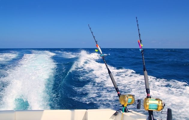 Deep Sea Fishing is a Year Round Adventure in Myrtle Beach